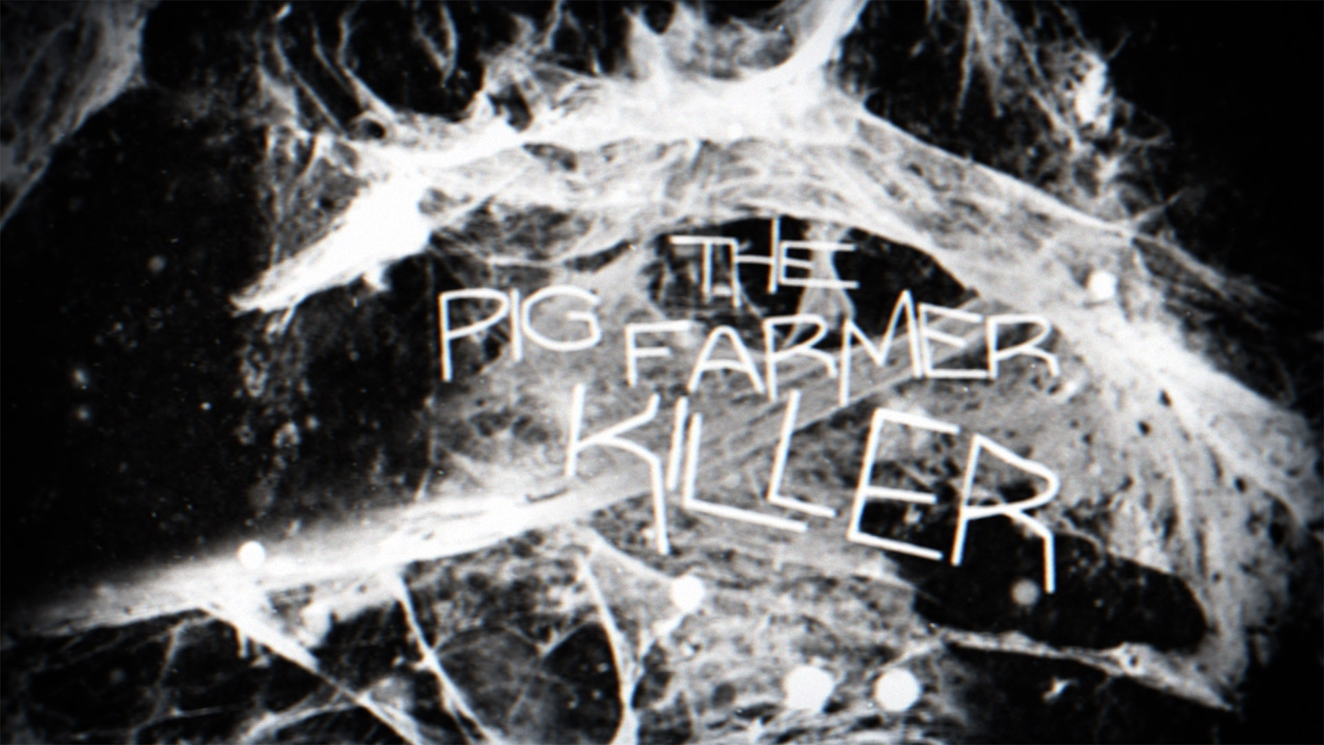 killer halloween frames_0004_Layer 2